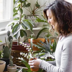 Every Plant Lover's Dream- A Bohemian Apartment with 200 Plants